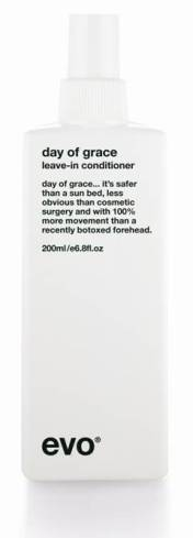 evo day of grace leave-in conditioner