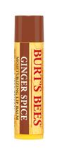 Burt's Bees Ginger Spice Moisturizing Lip Balm