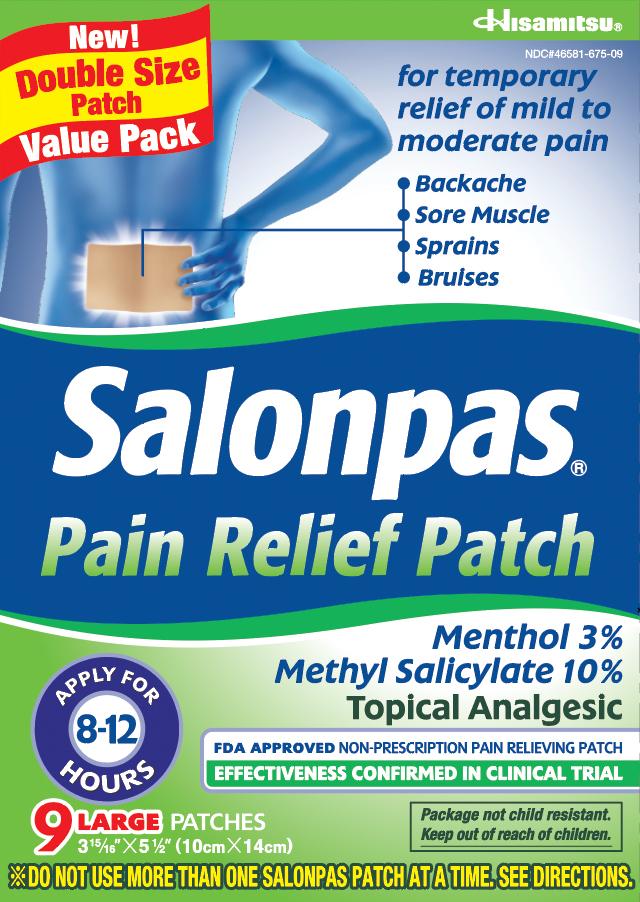 salonpas pain relief patch large